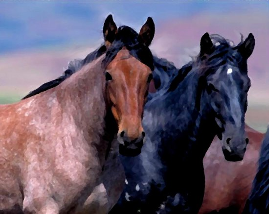 Click to get the codes for this image. 2 Horses Painting, Animals  Horses  Hooved Background, wallpaper or texture for any blog, web page, phone or desktop