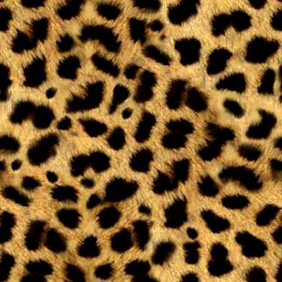 Leopard Background on Animal Print Fur Background Seamless Jpg