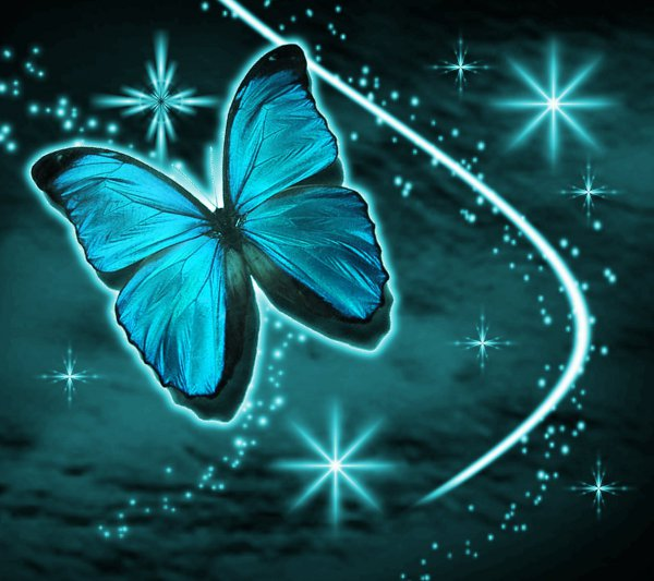 Click to get the codes for this image. Aqua Butterfly With Stars Background 1800x1600, Butterflies, Colors  Aqua Background, wallpaper or texture for Blogger, Wordpress, or any phone, desktop or blog.