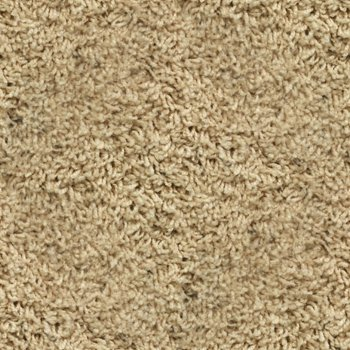 Click to get the codes for this image. Beige Shag Carpet Seamless Photo, Colors  Brown, Colors  White and Eggshell, Carpet Background, wallpaper or texture for, Blogger, Wordpress, or any web page, blog, desktop or phone.