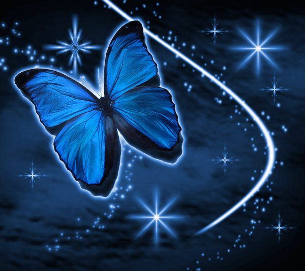 Click to get the codes for this image. Blue Butterfly With Stars Background 1800x1600, Butterflies, Colors  Blue Background, wallpaper or texture for Blogger, Wordpress, or any phone, desktop or blog.