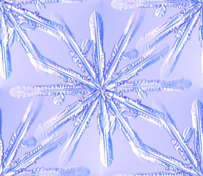Click to get the codes for this image. Blue Snowflake, Snowflakes, Seasons  Winter, Patterns  Nature Inspired, Colors  Blue Background, wallpaper or texture for Blogger, Wordpress, or any phone, desktop or blog.