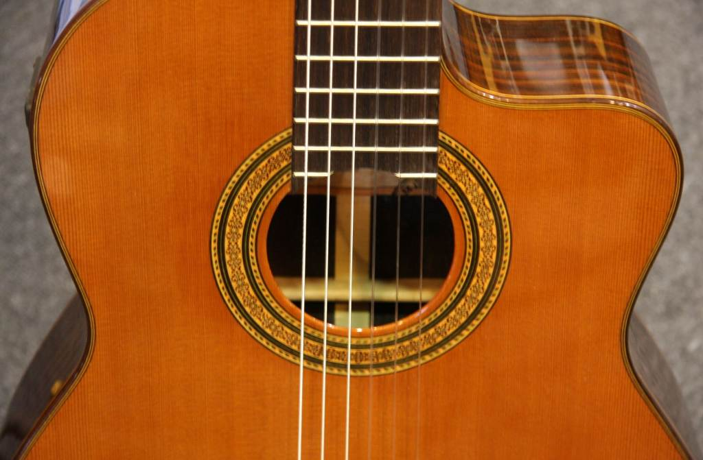 Click to get the codes for this image. Cutaway Guitar Close Up, Music and Musical Instruments Background, wallpaper or texture for any blog, web page, phone or desktop