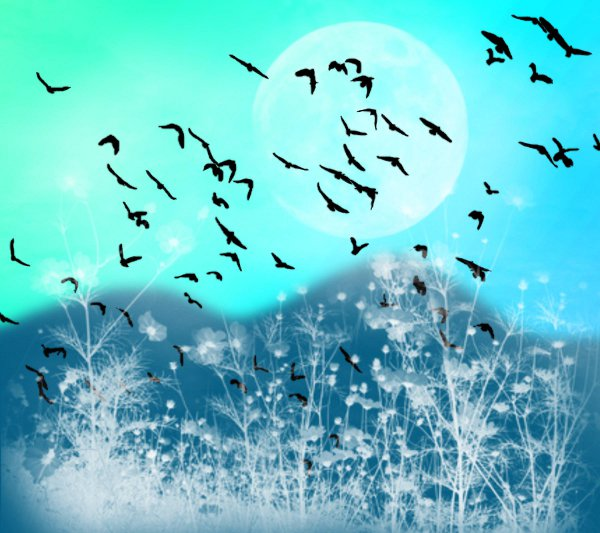 Click to get the codes for this image. Fantasy Landscape Witn Birds Background Blue Green 1800x1600, Animals  Birds, Fantasy, Colors  Aqua Background, wallpaper or texture for, Blogger, Wordpress, or any web page, blog, desktop or phone.