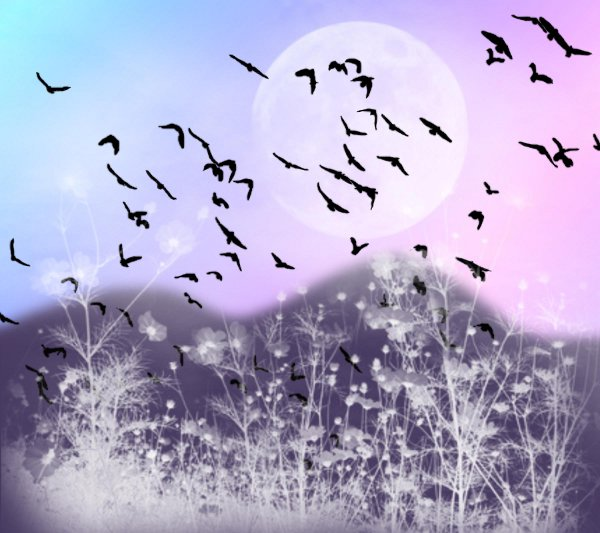 Click to get the codes for this image. Fantasy Landscape Witn Birds Background Pink Blue 1800x1600, Animals  Birds, Fantasy, Colors  Pink Background, wallpaper or texture for, Blogger, Wordpress, or any web page, blog, desktop or phone.