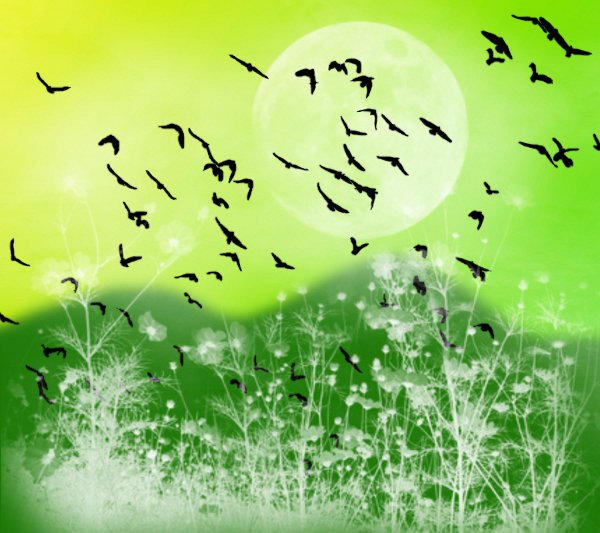 Click to get the codes for this image. Fantasy Landscape Witn Birds Background Yellow Green 1800x1600, Animals  Birds, Fantasy, Colors  Green Background, wallpaper or texture for, Blogger, Wordpress, or any web page, blog, desktop or phone.