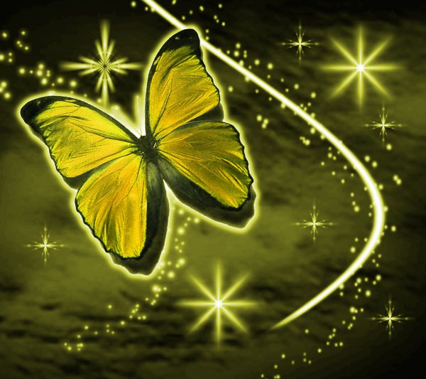 Click to get the codes for this image. Golden Butterfly With Stars Background 1800x1600, Butterflies, Colors  Yellow and Gold Background, wallpaper or texture for Blogger, Wordpress, or any phone, desktop or blog.