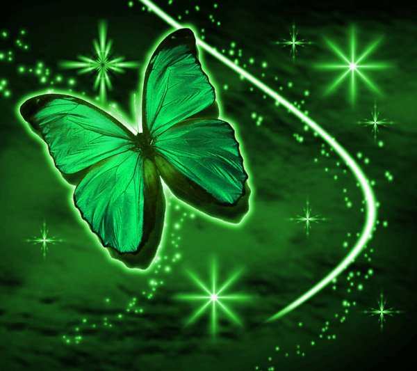 Click to get the codes for this image. Green Butterfly With Stars Background 1800x1600, Butterflies, Colors  Green Background, wallpaper or texture for Blogger, Wordpress, or any phone, desktop or blog.