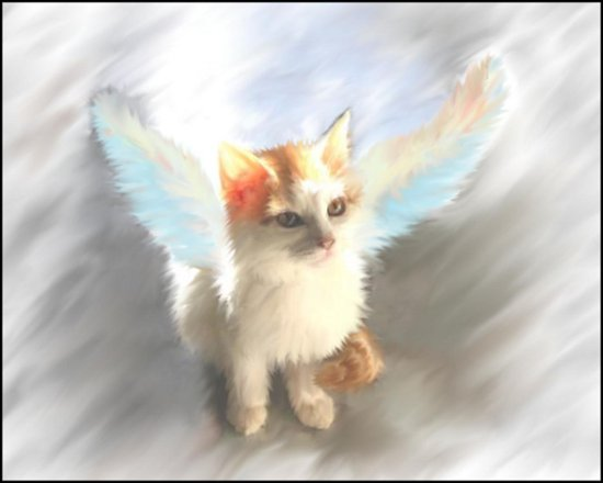 Click to get the codes for this image. Kitty Angel Painting, Animals  Cats, Angels and Fairies Background, wallpaper or texture for, Blogger, Wordpress, or any web page, blog, desktop or phone.