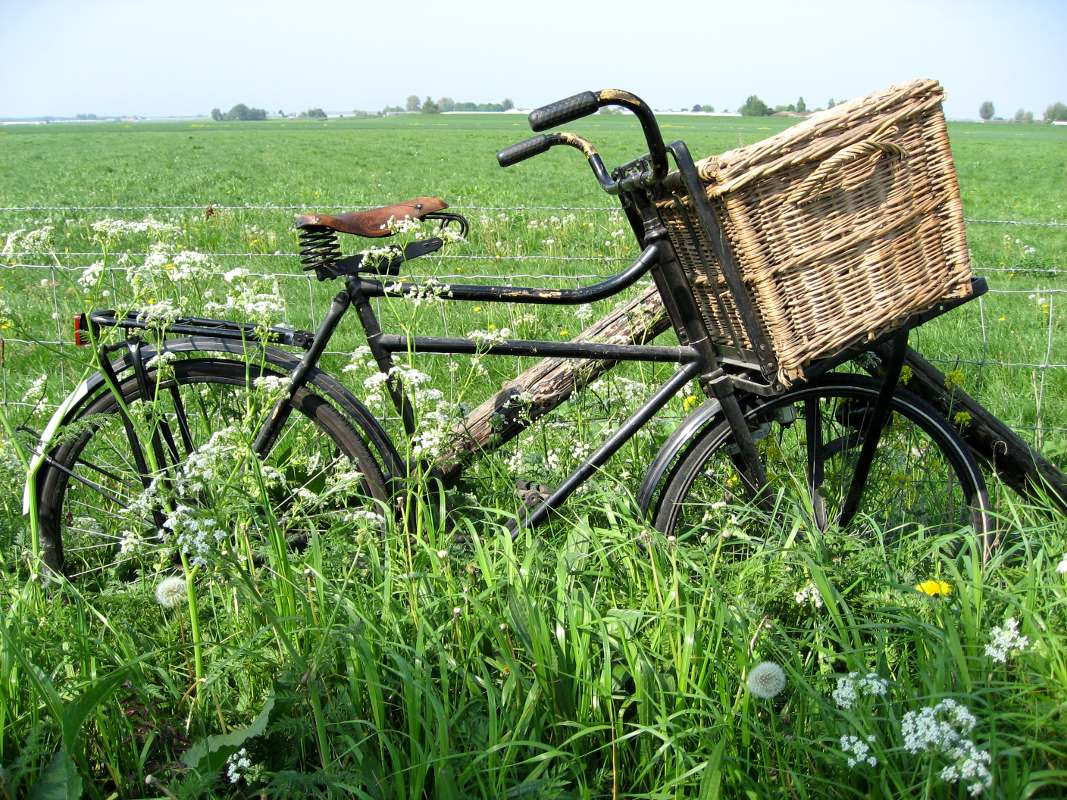 Click to get the codes for this image. Old Bike In Field, Sports and Athletics Background, wallpaper or texture for any blog, web page, phone or desktop