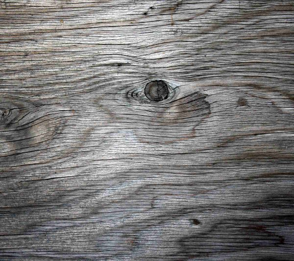 Click to get the codes for this image. Old Gray Plywood, Wood, Colors  Grey and Monochrome Background, wallpaper or texture for Blogger, Wordpress, or any phone, desktop or blog.