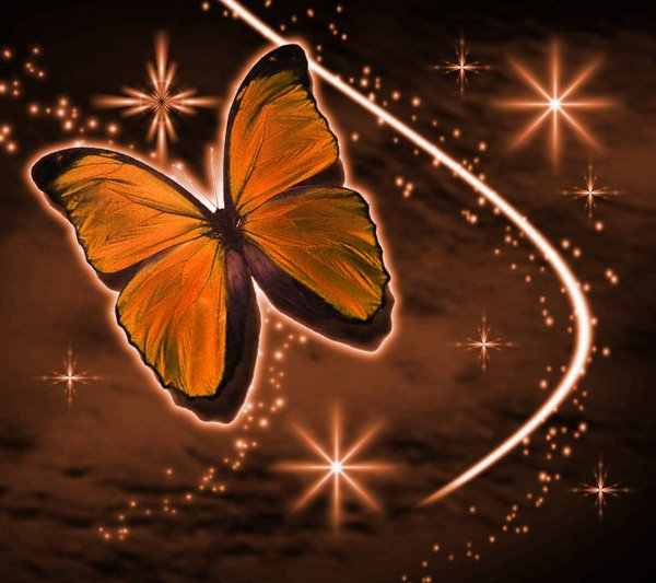 Click to get the codes for this image. Orange Butterfly With Stars Background 1800x1600, Butterflies, Colors  Orange Background, wallpaper or texture for Blogger, Wordpress, or any phone, desktop or blog.