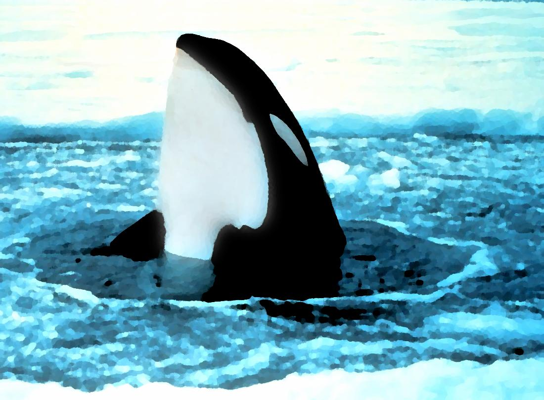 Click to get the codes for this image. Orca Popping Out Of Ice Painting, Animals  Ocean Life Background, wallpaper or texture for any blog, web page, phone or desktop