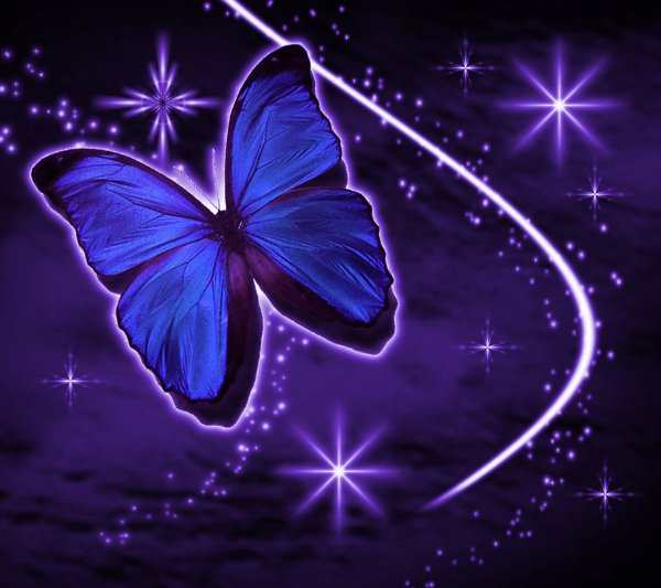 Background Wallpaper Image  Purple Butterfly With Stars Background    Purple Hearts And Stars Background