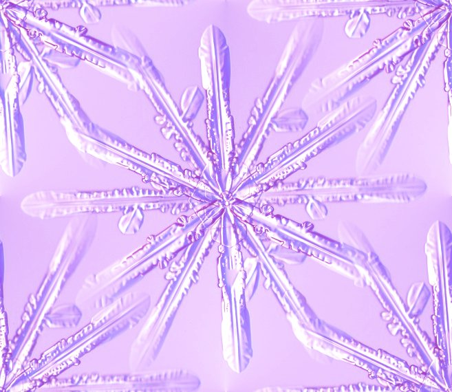 Click to get the codes for this image. Purple Snowflake, Snowflakes, Seasons  Winter, Patterns  Nature Inspired, Colors  Purple Background, wallpaper or texture for Blogger, Wordpress, or any phone, desktop or blog.