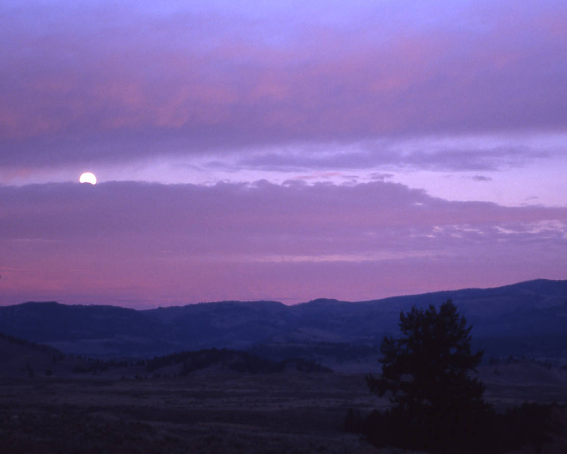 Click to get the codes for this image. Purple Sunset With Moon Rising, Nature Landscapes  Scenery, Sunsets and Sunrises Background, wallpaper or texture for any blog, web page, phone or desktop