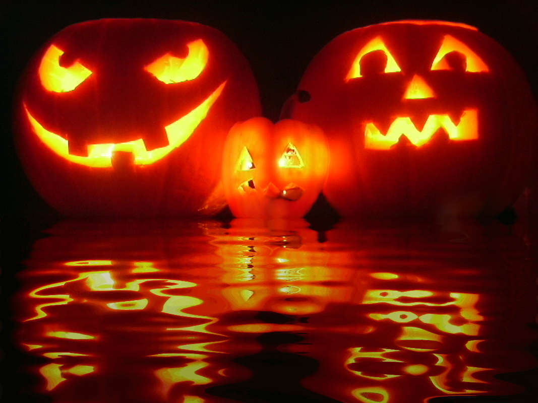Click to get the codes for this image. Reflecting Halloween Pumpkins, Halloween Background, wallpaper or texture for Blogger, Wordpress, or any phone, desktop or blog.