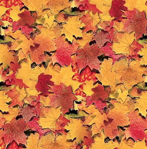 Click to get the codes for this image. Seamless Maple Leaves, Plants and Leaves, Seasons  Fall, Colors  Orange Background, wallpaper or texture for Blogger, Wordpress, or any phone, desktop or blog.