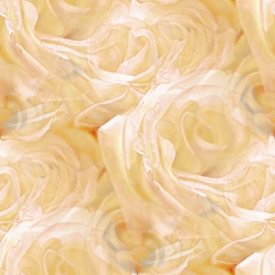 Click to get the codes for this image. Sepia Tone Roses, Flowers  Floral Designs, Colors  White and Eggshell Background, wallpaper or texture for Blogger, Wordpress, or any phone, desktop or blog.