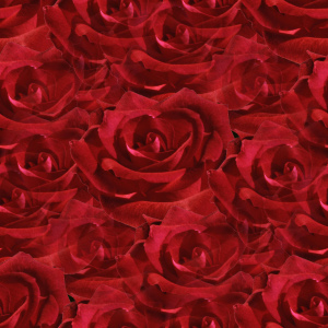 Click to get the codes for this image. Small Red Roses, Flowers  Floral Designs, Colors  Red, Holidays  Valentines Day Background, wallpaper or texture for Blogger, Wordpress, or any phone, desktop or blog.