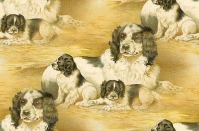 Click to get the codes for this image. Spaniel With Puppies, Animals  Dogs Background, wallpaper or texture for any blog, web page, phone or desktop