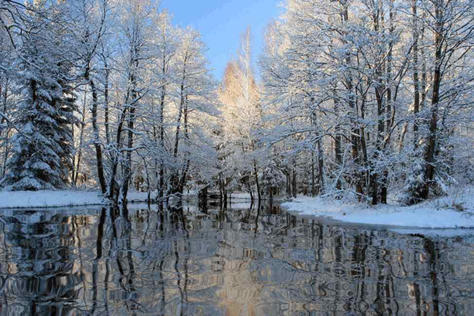 Click to get the codes for this image. Winter Lake Reflections, Snow and Ice, Nature Landscapes  Scenery, Seasons  Winter Background, wallpaper or texture for Blogger, Wordpress, or any phone, desktop or blog.