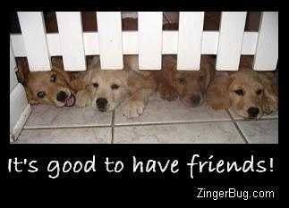 Another ThanksFriend image: (its_good_to_have_friends_golden_retriever_puppies) for MySpace from ZingerBug
