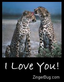 Click to get the codes for this image. I Love You Cheetahs, Animals  Cats, Love and Romance, I Love You Free Image, Glitter Graphic, Greeting or Meme for Facebook, Twitter or any forum or blog.