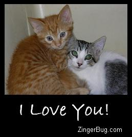 Click to get the codes for this image. I Love You Kittens, Animals  Cats, Love and Romance, I Love You Free Image, Glitter Graphic, Greeting or Meme for Facebook, Twitter or any forum or blog.
