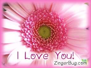 Click to get the codes for this image. I Love You Pink Flower, Love and Romance, Flowers, I Love You Free Image, Glitter Graphic, Greeting or Meme for Facebook, Twitter or any blog.