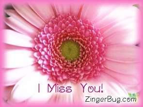 Click to get the codes for this image. I Miss You Pink Flower, I Miss You, Flowers Free Image, Glitter Graphic, Greeting or Meme for Facebook, Twitter or any blog.
