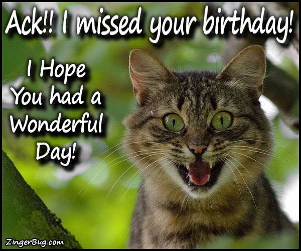 Click to get the codes for this image. Ack Cat Missed Your Birthday, Happy Birthday, Happy Birthday, Belated Birthday Free Image, Glitter Graphic, Greeting or Meme for Facebook, Twitter or any forum or blog.