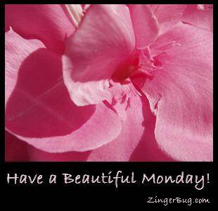 Click to get the codes for this image. Have a Beautiful Monday Pink Flower, Happy Monday, Flowers Free Image, Glitter Graphic, Greeting or Meme for Facebook, Twitter or any forum or blog.