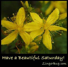 Click to get the codes for this image. Have a Beautiful Saturday Yellow Flowers, Happy Saturday, Flowers Free Image, Glitter Graphic, Greeting or Meme for Facebook, Twitter or any forum or blog.