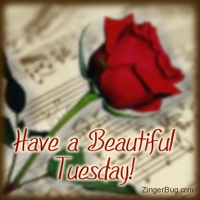 Click to get the codes for this image. Have a Beautiful Tuesday Music Rose, Music Comments, Happy Tuesday, Flowers, Popular Favorites Glitter Graphic, Comment, Meme, GIF or Greeting
