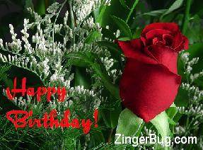 Click to get the codes for this image. Happy Birthday Red Rose Photo, Birthday Flowers, Flowers, Happy Birthday Free Image, Glitter Graphic, Greeting or Meme for Facebook, Twitter or any forum or blog.