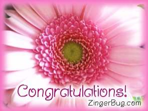 Click to get the codes for this image. Congratulations Pink Flower, Congratulations, Flowers Free Image, Glitter Graphic, Greeting or Meme for Facebook, Twitter or any blog.