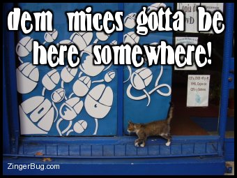 Click to get the codes for this image. Cute photo of a cat walking in front of a shop window displaying a poster of lots of computer mice. The comment reads: dem mices gotta be here somewhere!