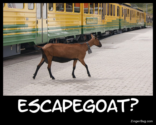 Click to get the codes for this image. Escapegoat Funny Meme, Animals  Horses  Hooved Creatures, Funny Stuff  Jokes Free Image, Glitter Graphic, Greeting or Meme for Facebook, Twitter or any forum or blog.