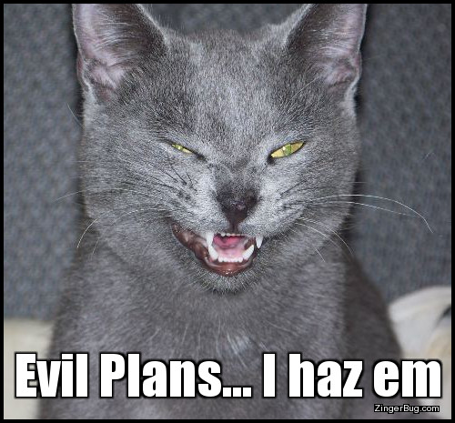 Click to get the codes for this image. This funny meme features a photo of a gray cat who appears to be snickering or sneering. The caption reads: Evil plans… I haz em