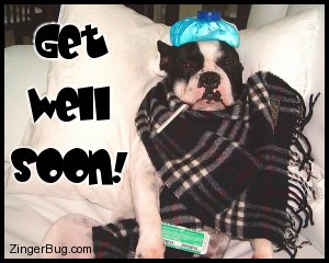 Click to get the codes for this image. Hysterical photo of a dog wrapped in a blanket with a water bottle on its head an a thermometer in its mouth. Comment reads: Get Well Soon!