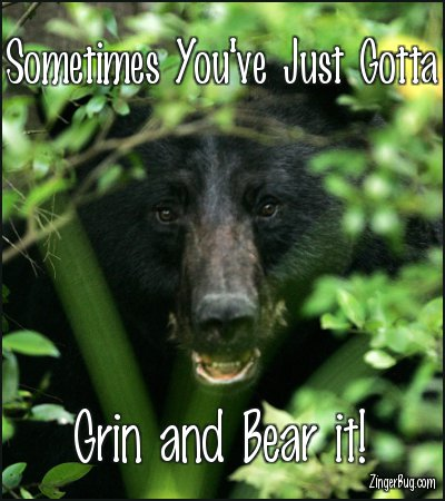 Click to get the codes for this image. Grin And Bear It Bear Photo, Animals  Bears, Encouragement  Cheer Up Free Image, Glitter Graphic, Greeting or Meme for Facebook, Twitter or any forum or blog.
