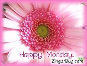 Click to get the codes for this image. Happy Monday Pink Flower, Happy Monday, Flowers Free Image, Glitter Graphic, Greeting or Meme for Facebook, Twitter or any forum or blog.
