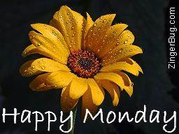 Click to get the codes for this image. Happy Monday Yellow Flower Photograph, Happy Monday, Flowers Free Image, Glitter Graphic, Greeting or Meme for Facebook, Twitter or any forum or blog.