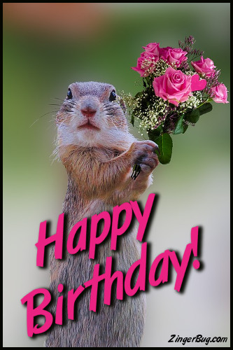 Click to get the codes for this image. Happy Birthday Cute Squirrel With Bouquet, Happy Birthday, Happy Birthday, Birthday Animals, Funny Birthday Greetings, Birthday Flowers Free Image, Glitter Graphic, Greeting or Meme for Facebook, Twitter or any forum or blog.