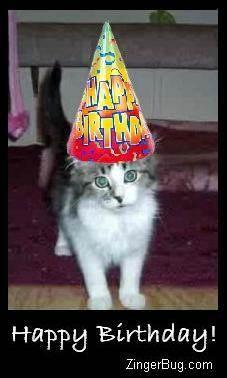 Click to get the codes for this image. Happy Birthday Kitten Photo, Birthday Animals, Animals  Cats, Happy Birthday Free Image, Glitter Graphic, Greeting or Meme for Facebook, Twitter or any forum or blog.