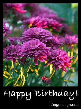 Click to get the codes for this image. Happy Birthday Purple Flowers, Birthday Flowers, Flowers, Happy Birthday Free Image, Glitter Graphic, Greeting or Meme for Facebook, Twitter or any forum or blog.