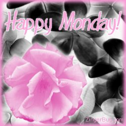 Click to get the codes for this image. Happy Monday Pink Rose Glitter Graphic, Happy Monday, Flowers Free Image, Glitter Graphic, Greeting or Meme for Facebook, Twitter or any forum or blog.