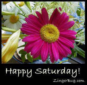 Click to get the codes for this image. Happy Saturday Flowers, Happy Saturday, Flowers Free Image, Glitter Graphic, Greeting or Meme for Facebook, Twitter or any forum or blog.