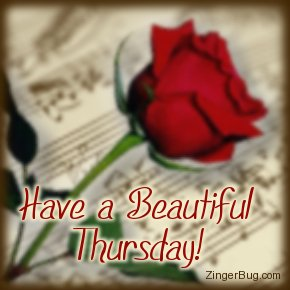 Click to get the codes for this image. Happy Thursday Music Rose, Music Comments, Happy Thursday, Flowers Free Image, Glitter Graphic, Greeting or Meme for Facebook, Twitter or any forum or blog.